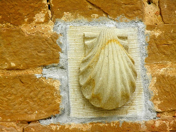 The Scallop Shell typical of the Camino
